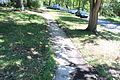 Breezedale Sidewalks, Lawrence Kansas IMG 9829.JPG