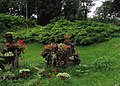 Brestovac, Serbia - panoramio (1).jpg