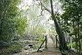 Bridge in the Kirstenbosch National Botanical Garden, Western Cape (6252697311).jpg