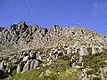 Bristly Ridge - geograph.org.uk - 1941947.jpg