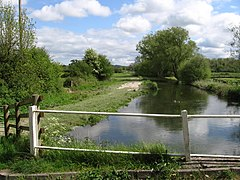 Britford - Water Meadows.jpg