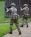 British Assault Rifles MOD 45162605.jpg