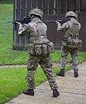 British Assault Rifles MOD 45162605.jpg