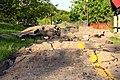 Broken path (509366565).jpg