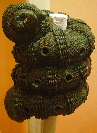 Africa - The intricate 9th-century bronzes from Igbo-Ukwu, in Nigeria displayed a level of technical accomplishment that was notably more advanced than European bronze casting of the same period.