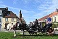 Bruges horse carriage 1.jpg