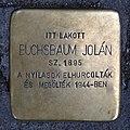 Buchsbaum Jolán stolperstein (Budapest-13 Hegedűs Gyula u 8b).jpg