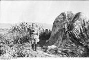 Bundesarchiv Bild 101I-166-0521-01, Kreta, Bernhard-Hermann Ramcke neben Fallschirm