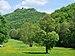 Burg Hohenurach gesehen vom Wasserfall.jpg