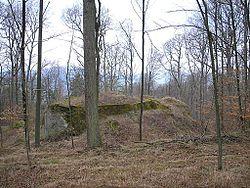 Burg Rotenhan Berg.jpg