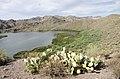Butcher Jones Trail to Pinter's Point Loop, Tonto National Park, Saguaro Lake, Ft. McDowell, AZ - panoramio (105).jpg