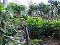 Butterfly garden - Motýlí zahrada - panoramio.jpg