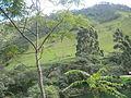 Cadena volcánica de los Coconucos 5.JPG
