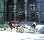 Caleche Vieux-Montreal Hiver.JPG