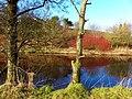Camowen River - geograph.org.uk - 1728824.jpg