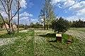 Campo di Fossoli - Ulivo di Gerusalemme.jpg