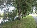 Canal at Whiles Lane Birstall.jpg