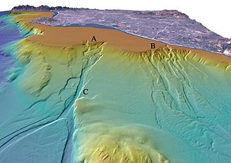 Submarine canyon - Perspective view shaded relief image of the San Gabriel and Newport submarine canyons off Los Angeles