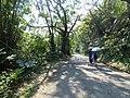 Caoling Historic Trail 草嶺古道 - panoramio (3).jpg