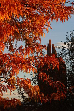 Powell, Wyoming - Carillon with fall foliage