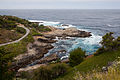Carmel Highlands May 2011 006.jpg
