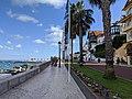 Cascais Marina (49663563447).jpg