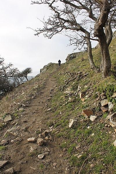 File:Castell Degannwy Deganwy Castle Sir Ddinbych Wales 51.JPG