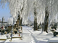 Cemetery in winter.jpg