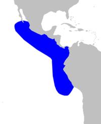 .::Zifio Peruano o Zifio Menor 200px-Cetacea_range_map_Pygmy_Beaked_Whale
