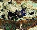 Chalcoalumite-Malachite-Azurite-201693.jpg