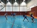 Championnat de France féminin de handball U18 - ENTENTE PAYS DE L'AIN vs LA MOTTE-SERVOLEX (2017-11-12) - 6.JPG