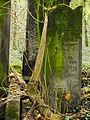 Chenstochov ------- Jewish Cemetery of Czestochowa ------- 101.JPG