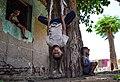 Children playing on the tree 3.jpg