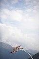 Chloé Moglia - suspension 9.jpg