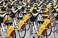 CityCycles lined up in King George Square (5220354106).jpg