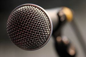 Close-up of a microphone.jpg