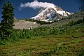 Cloudy Cap on Mt Hood, Mt Hood National Forest (37193489075).jpg