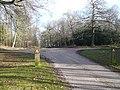 Clumber Park Crossroads - geograph.org.uk - 683096.jpg