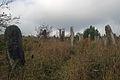 Cmentarz zydowski 3 - 640733.JPG