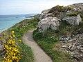 Coastal footpath west of St Ives - geograph.org.uk - 1841574.jpg