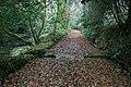 Cobbly Lane, Avonwick - geograph.org.uk - 1066367.jpg