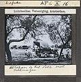 Collectie NMvWereldculturen, TM-10004260, Lichtbeeld- Familie bij huifkar in het veld, fotograaf- niet bekend - unknown, 1910-1940.jpg