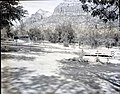 Completed South Campground area, showing sites, and visitor use. ; ZION Museum and Archives Image 003 01036 ; ZION 7688 (6df5e823cbf24299a83a5779b6688a69).jpg