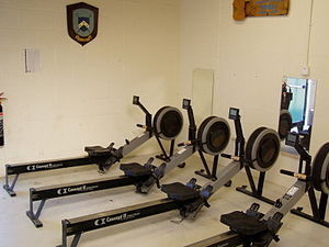 "Concept2 - A row of Concept2 ""Model C"" indoor rowers"