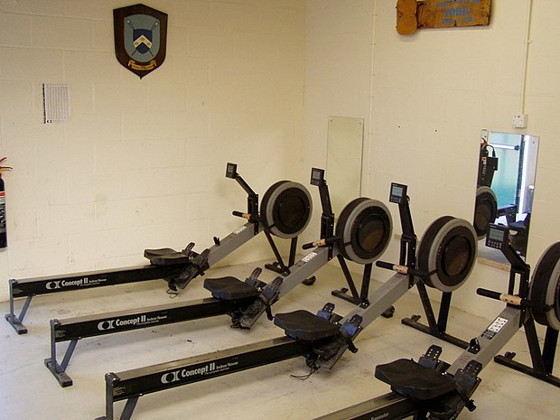 "A row of Concept2 ""Model C"" ergometers Concept2 Indoor Rowers.JPG"