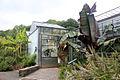 Conservatoire botanique 010715 101.JPG
