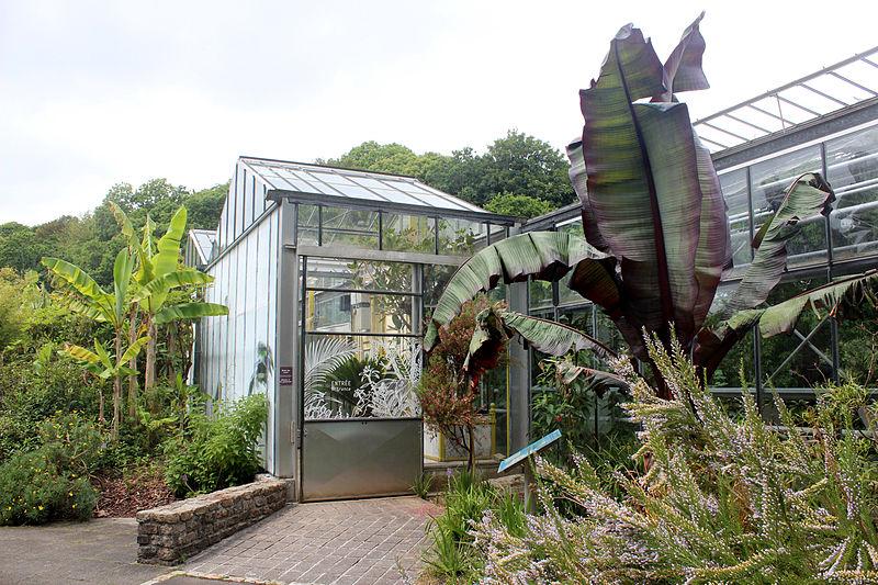File:Conservatoire botanique 010715 101.JPG