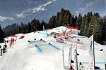 Coop Skicross FIS World Cup - Grindelwald - Meiringen-Hasliberg (1457-59).jpg