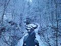 Cornell Campus in Winter.jpg