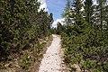 Cortina - trail.jpg